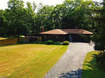 Ravenna Single Family Home For Sale: 4682 Rootstown Road