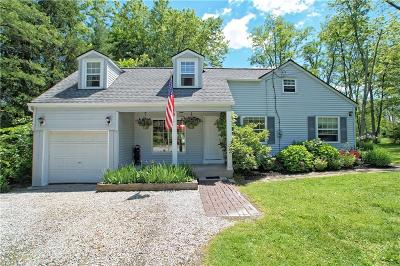 Twinsburg Single Family Home For Sale: 9913 Shepard Road