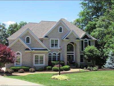 Single Family Home For Sale: 4150 Williamsburg Court