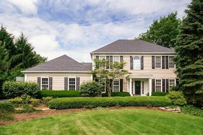 Chagrin Falls Single Family Home For Sale: 403 Deer Court