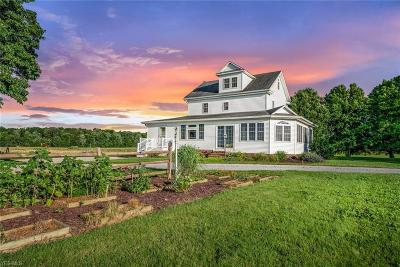 Columbiana County Single Family Home For Sale: 1218 S Bandy Road