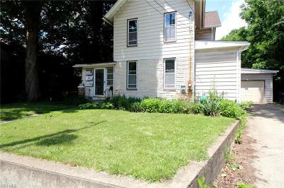 Kent Single Family Home For Sale: 219 Lake Street