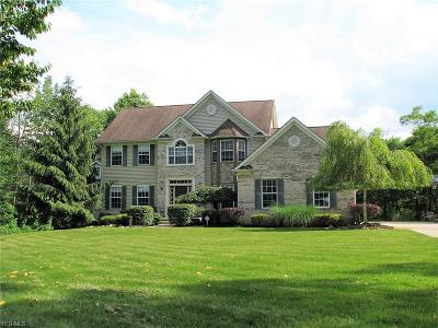 Auburn Single Family Home Active Under Contract: 11991 Stafford Road