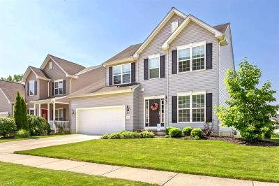Single Family Home For Sale: 4961 Hiddenview Court