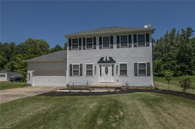 Macedonia Single Family Home Active Under Contract: 1121 Twinsburg Road