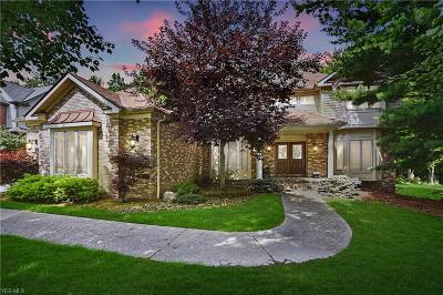 Brecksville Single Family Home For Sale: 6729 Pin Tail Drive
