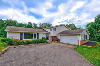 Chagrin Falls Single Family Home For Sale: 64 Maple Hill Drive