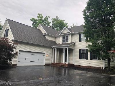 Chagrin Falls Single Family Home For Sale: 534 Manor Brook Drive