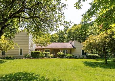 Chagrin Falls Single Family Home For Sale: 17041 Messenger Road