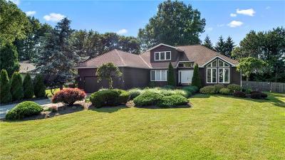 Mentor Single Family Home For Sale: 7070 Sandbridge Court