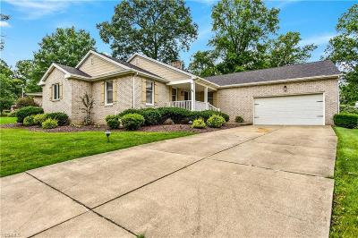 Canfield Single Family Home For Sale: 45 Robin Hood Drive