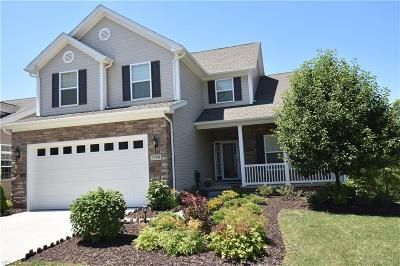 Macedonia Single Family Home Active Under Contract: 7780 Willow Lane