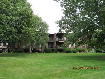 Condo/Townhouse For Sale: 2960 N River Road #D15