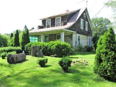 Ashtabula Single Family Home For Sale: 537 Commercial Place