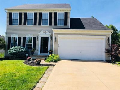Painesville OH Single Family Home For Sale: $219,900