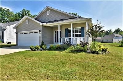 Reminderville Single Family Home Active Under Contract: 10457 Dogwood Drive
