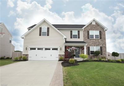 Single Family Home Active Under Contract: 11443 White Tail Run