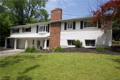 Willoughby Hills Single Family Home For Sale: 29481 Eddy Road