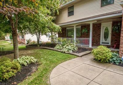 Macedonia Single Family Home Active Under Contract: 1070 Ledge Road