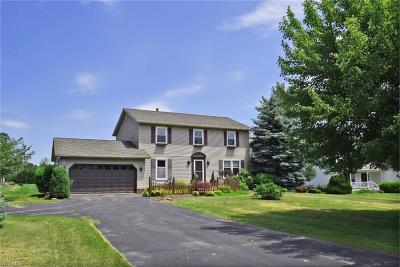Chagrin Falls Single Family Home For Sale: 16821 Snyder Road