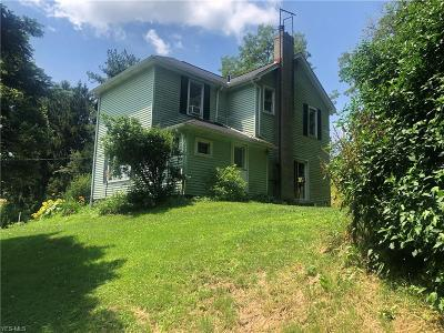 Columbiana County Single Family Home For Sale: 11954 State Route 644