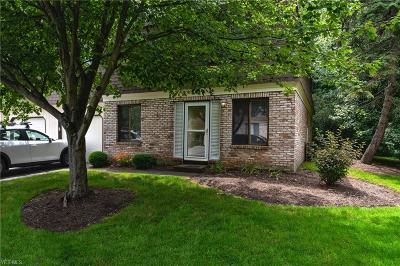 Painesville OH Condo/Townhouse Active Under Contract: $65,000