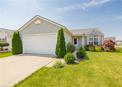 North Ridgeville Single Family Home For Sale: 37307 Tail Feather Drive