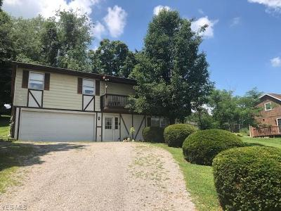 Muskingum County Single Family Home Active Under Contract: 245 Walnut Hills Drive