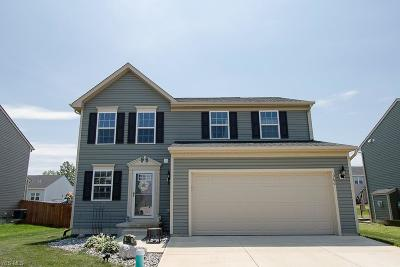 Painesville OH Single Family Home For Sale: $234,900