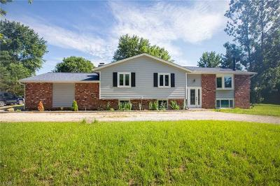 Seville Single Family Home Active Under Contract: 6289 Buffham Road