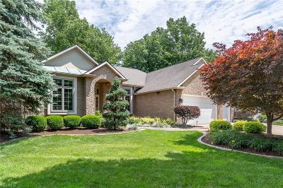 Mentor Single Family Home Active Under Contract: 5375 Snell Drive