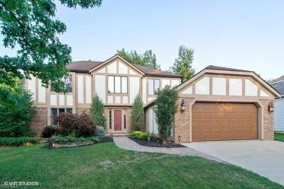 High Point Single Family Home For Sale: 18239 Williamsburg Oval