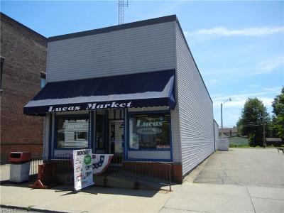 Stark County Commercial For Sale: 118 E Main Street
