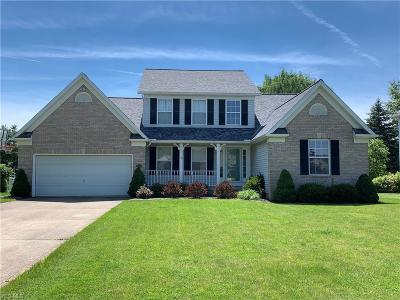 Medina County Single Family Home For Sale: 4056 Stonegate Drive