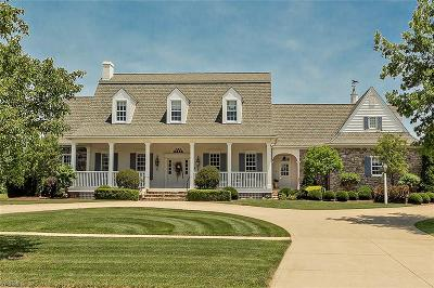 Medina Single Family Home For Sale: 4165 Fox Meadow Drive