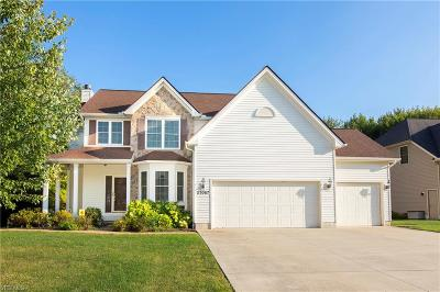 Single Family Home For Sale: 27067 Waterside Drive