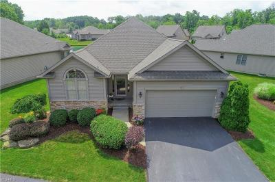 Austintown Condo/Townhouse Active Under Contract: 5960 Herons Boulevard #21