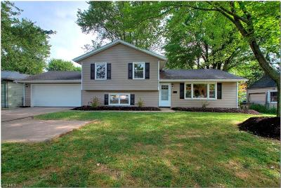 Fairview Park Single Family Home For Sale: 21650 Brookpark Road
