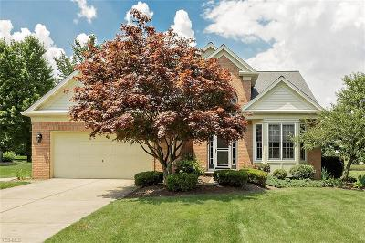 Twinsburg Single Family Home Active Under Contract: 10082 Timothy Lane