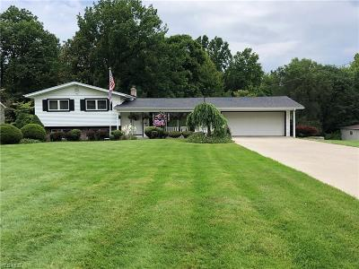 Youngstown Single Family Home For Sale: 4602 Norquest