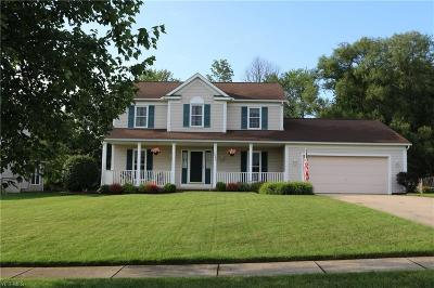 Twinsburg Single Family Home For Sale: 2093 Parkview Drive