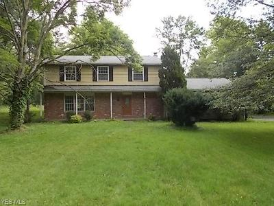 Hudson Single Family Home For Sale: 7911 Valley View Road