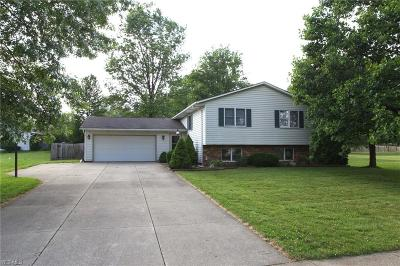 Medina County Single Family Home For Sale: 1432 State Road