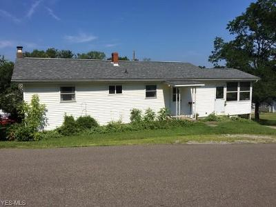 Zanesville Single Family Home Active Under Contract: 1008 Leonard Avenue