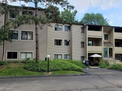 Westlake Condo/Townhouse Active Under Contract: 1670 Cedarwood Drive #249