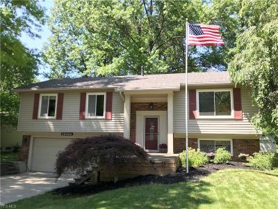 Single Family Home Active Under Contract: 26944 Oxford Park Lane