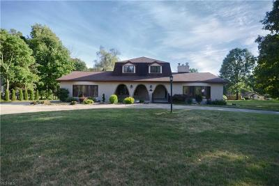 Canfield Single Family Home For Sale: 4087 Pebble Beach Drive