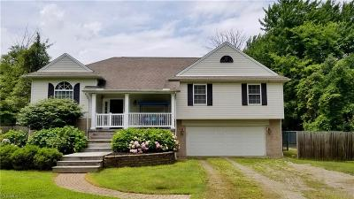 Concord Single Family Home For Sale: 7780 Viewmount Drive