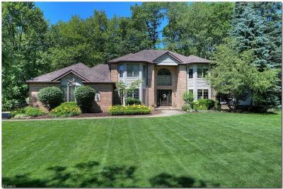 Brecksville Single Family Home For Sale: 4514 Glen Eagle