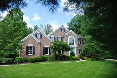 Medina Single Family Home For Sale: 304 Meadow Oaks Trail